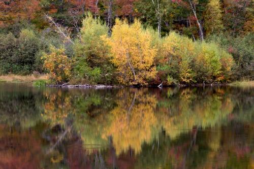 nature-landscape-fall-autumn-204465
